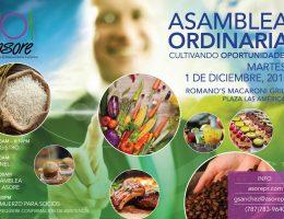 ASORE ASAMBLEA 2015