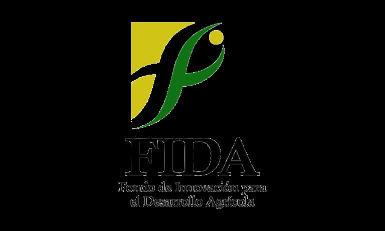 BRS 2021_FIDA